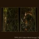 TPPG_50_11_20900_-Quiet-Moment